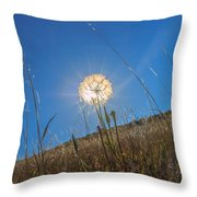 Glowing Summer Throw Pillow