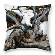 Gnarled Cone Throw Pillow