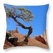 Gnarled Pine In Bryce Canyon Utah Throw Pillow
