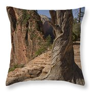 Gnarled Trunk Throw Pillow