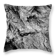 Gnarled Wood Throw Pillow