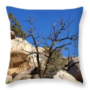 Gnarly Joshua Tree Throw Pillow by Barbara Snyder