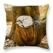 Gnarly Stump Throw Pillow