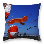 Go Fly A Kite 1 Throw Pillow