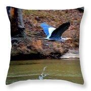 Go Heron Go Throw Pillow