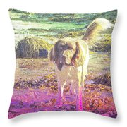 One Day Wil Will Go Hunting For Something Valuable  Throw Pillow