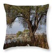 Go To The River Throw Pillow