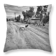 Goat And Box Throw Pillow