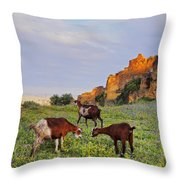 Goats In Fes Throw Pillow