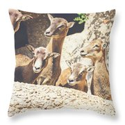 Goats On A Rock Throw Pillow