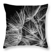 Goatsbeard Seeds Throw Pillow
