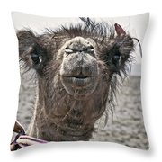 Gobi Desert- Mongolia Throw Pillow