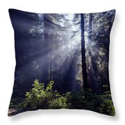 God Rays Through The Fog Throw Pillow