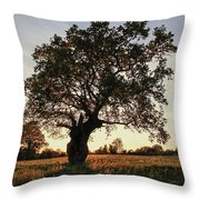 Goddess Tree 2 Throw Pillow