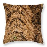 Goden Fern Branch Throw Pillow