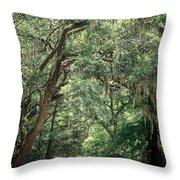 God's Canopy Throw Pillow