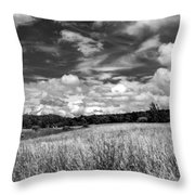 God's Country In Monochrome Throw Pillow