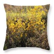 God's Golden Bouquet In Autumn Throw Pillow