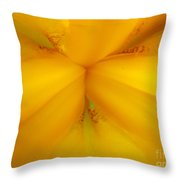 Gods Kaleidoscope 2 Throw Pillow