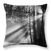 God's Light Throw Pillow