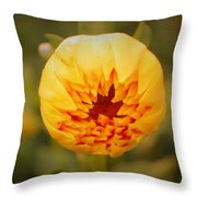 Godsend Sunshine Throw Pillow