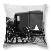 Going Buggy Throw Pillow