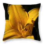 Going For Gold Throw Pillow by Camille Lopez