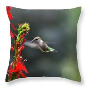 Going In For Seconds Throw Pillow