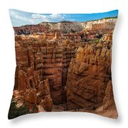 Going To Wall Street Throw Pillow
