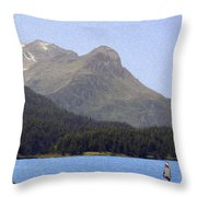 Going Where The Wind Blows Throw Pillow by Jeff Kolker