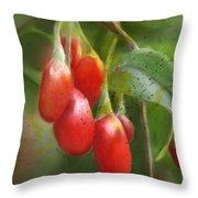 Gojo Berries Throw Pillow