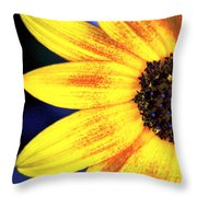 Gold And Blue Throw Pillow