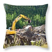 Gold At The End Of The Rainbow Along Taylor Highway-ak Throw Pillow