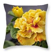 Gold Beauty Throw Pillow