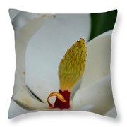Gold Centered Magnolia Throw Pillow