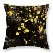 Gold Coin Aspen Throw Pillow