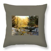 Gold Creek Glow Throw Pillow