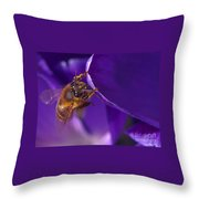 Gold Dust Throw Pillow