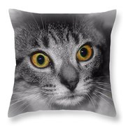 Gold Eyes Throw Pillow