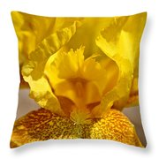 Gold Glamour Throw Pillow