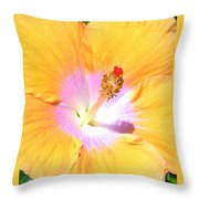 Gold Hibiscus Throw Pillow