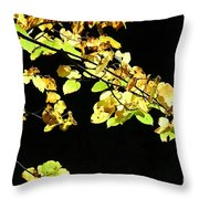 Gold On Black Throw Pillow
