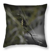 Gold Orb Weaver Throw Pillow