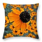 Gold Rudbeckia Blooms Throw Pillow