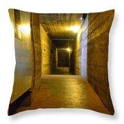 Gold Standard Throw Pillow