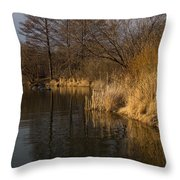 Golden Afternoon Reflections Throw Pillow