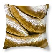 Golden Art Throw Pillow