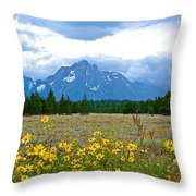 Golden Asters And Tetons From The Road In Grand Teton National Park-wyoming Throw Pillow