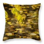 Golden Autumn Colour Foliage On Rainy Pond Throw Pillow