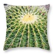 Golden Ball Cactus Throw Pillow
